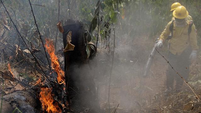 'Dünyanın ciğerleri' yanıyor: Amazonlardaki yangın hakkında ne biliyoruz?
