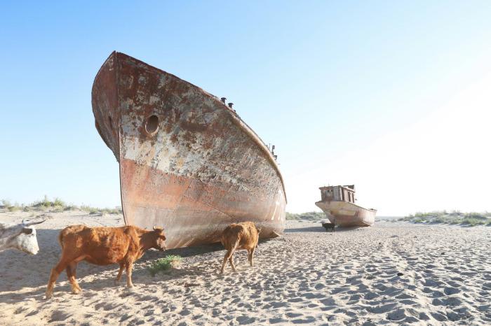 İnsanlığın kendi eliyle yok ettiği göl: Aral