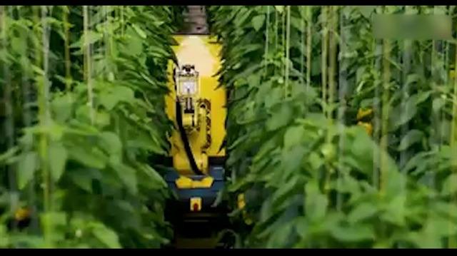 Meyve-sebze dostu makine bahçeleri kurtaracak