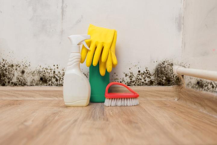 Duvardaki Küf Neden Olur Nasıl Temizlenir Duvar Küfünü Temizlenin