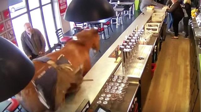 Yarış atı hızını alamayıp kafeye daldı!