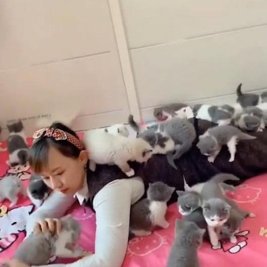 Evinde onlarca kediye bakan kadının içinizi ısıtacak görüntüleri