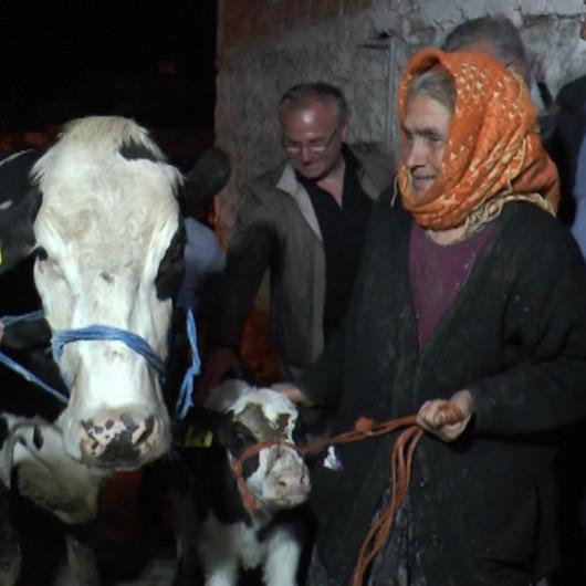 Bakan Pakdemirli'den Sabiha nineye hediye inek ve buzağı