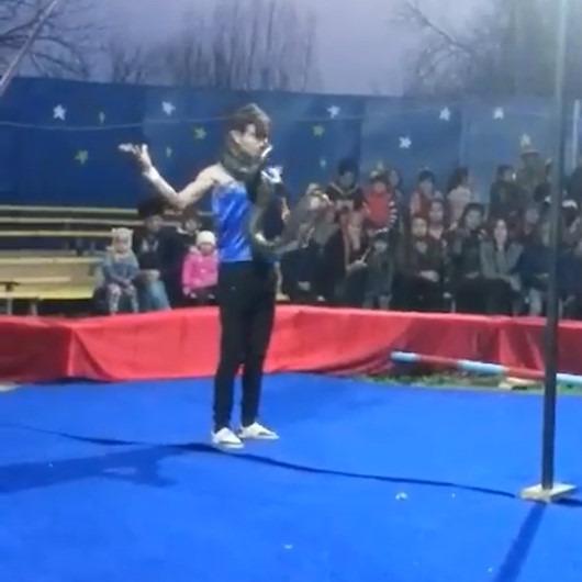Pitonla gösteri yapan sirk çalışanının 'zor anları'