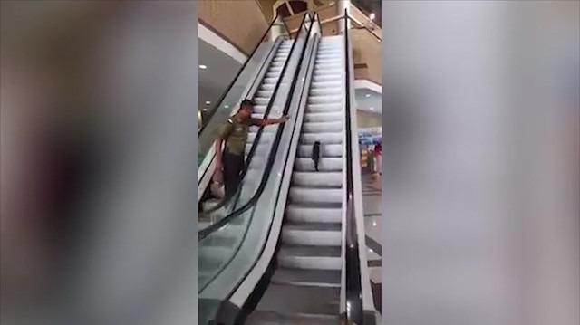 Sevimli kedinin yürüyen merdiven keyfi