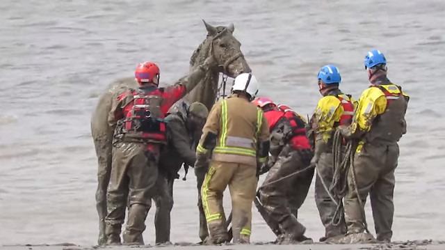 Burnham sahilinde çamura batan atın kurtarılışı