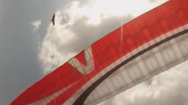 Yamaç paraşütüne şahin saldırısı anbean görüntülendi