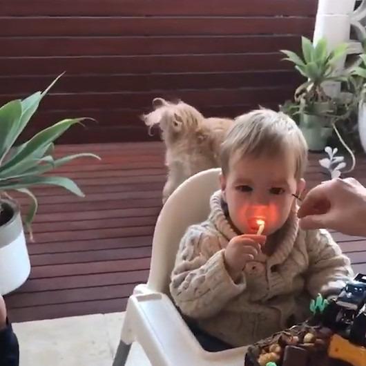 Doğum günü pastasındaki yanan mumu yemeye çalışan bebek