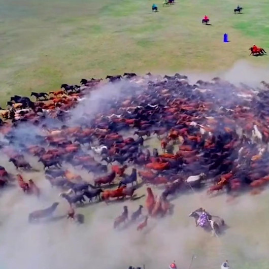 Atların 'Naadam Festivali'nde drone ile kaydedilen muhteşem görüntüleri