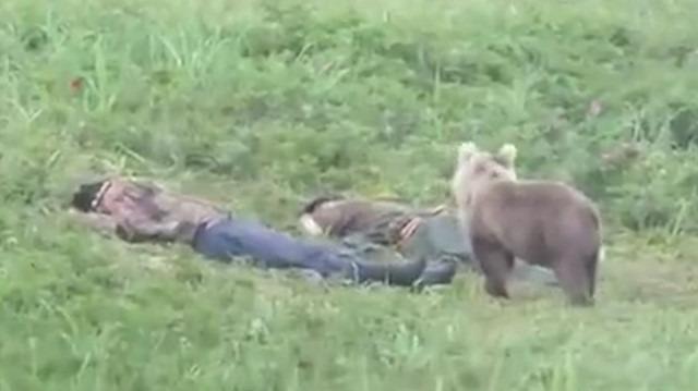 Ormanda uyuyakalan adamları uyandıran meraklı ayı