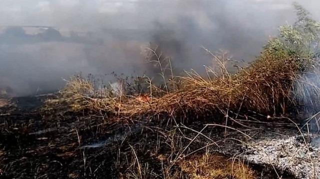 Lastik yakarken yangın çıkardılar