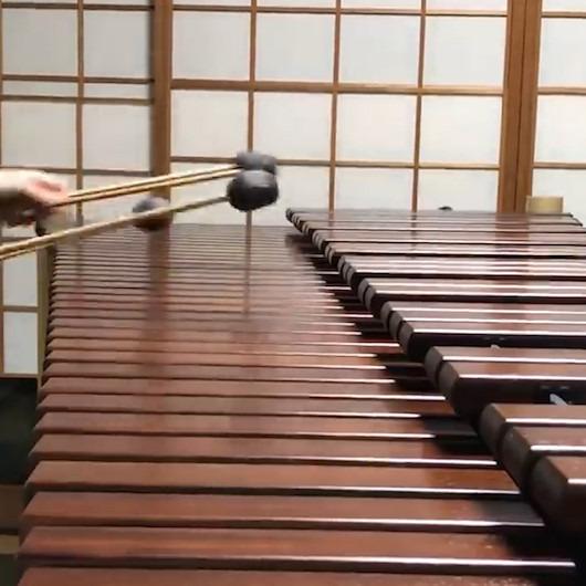 iPhone zil seslerinin oluşturulduğu enstrüman: Marimba