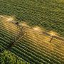 Tarımda dijitalleşme dönemi: 'Dijital Tarım Projesi hayata geçirildi'